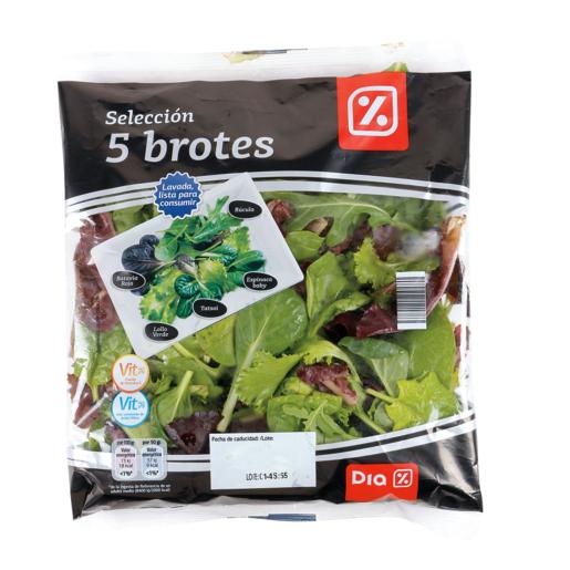 DIA ensalada selección 5 brotes bolsa 100 gr