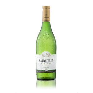 CASTILLO DE SAN DIEGO BARBADILLO vino blanco de la tierra  botella 75 cl