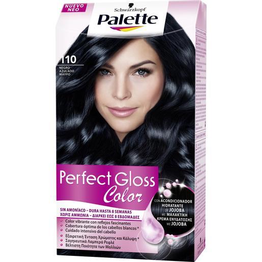 PALETTE PERFECT GLOSS tinte Negro Azulado Nº 110 caja 1 ud